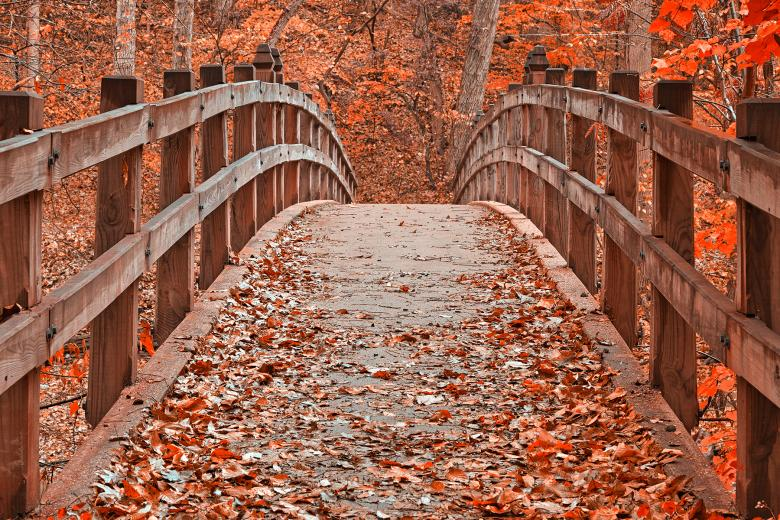 Ruby Red Bridge - HDR - Free Autumn Stock Photos