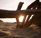 Free Photo - Wooden