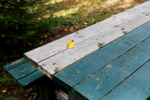 Table Bench - Free Stock Photo