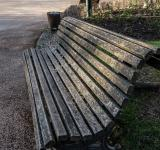 Free Photo - An old bench