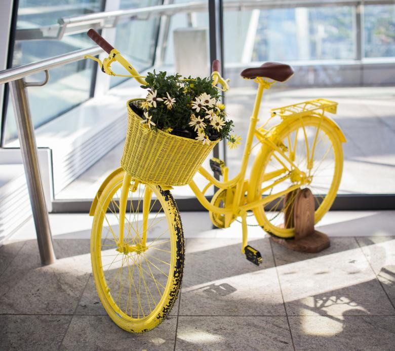 Free Stock Photo of Yellow Cycle Created by Negativespace