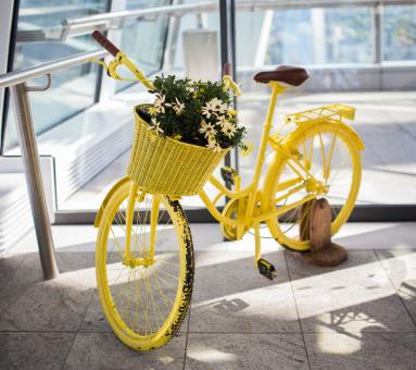 Yellow Cycle - Free Stock Photo