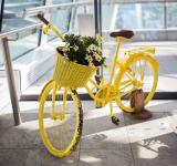 Free Photo - Yellow Cycle