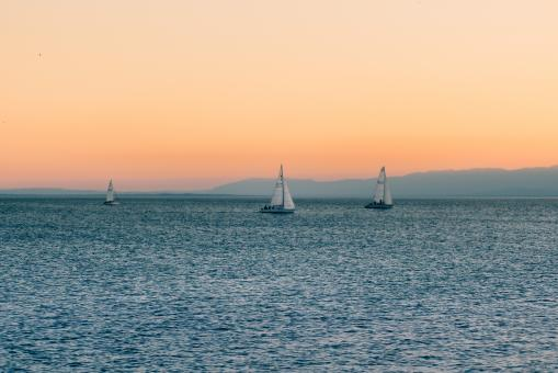 Sail Boats - Free Stock Photo