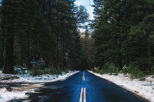 Road in Winter - Free Stock Photo