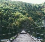 Free Photo - The Bridge