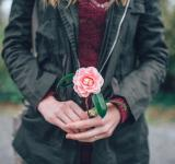Free Photo - Flower In Hand