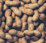 Free Photo - Peanuts