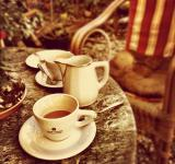 Free Photo - Tea Time