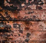 Free Photo - Gritty Painted Surface