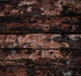 Free Photo - Grunge Painted Wood