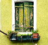 Free Photo - The Window