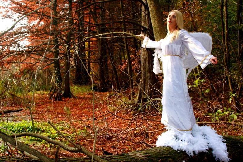 Free Stock Photo of Angel in the Forest Created by Pixabay