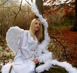Free Photo - Blonde Angel