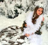 Free Photo - Covered with Snow