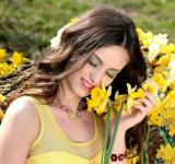 Free Photo - Yellow Beauty