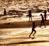 Free Photo - Family Plays on the Beach Silhouette