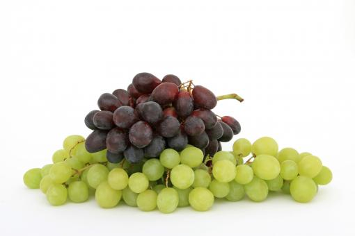 Grapes - Free Stock Photo