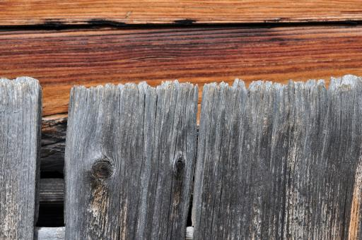 Wooden Fence - Free Stock Photo