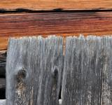 Free Photo - Wooden Fence