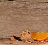 Free Photo - Walnut n Orange