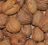 Free Photo - Walnuts