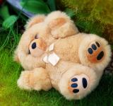Free Photo - Teddy Bear