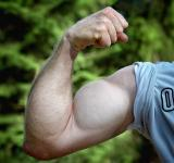 Free Photo - Muscles