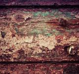 Free Photo - Colorful Grunge Wood Texture