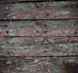 Free Photo - Grunge Painted Wood Texture