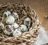 Free Photo - Basket of Eggs