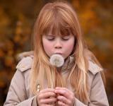 Free Photo - Girl with a Dandelion