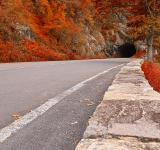 Free Photo - Skyline Tunnel Drive - Ruby Autumn HDR