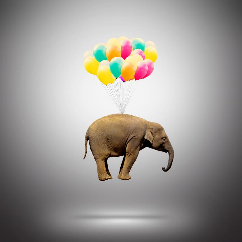 Free Stock Photo of Elephant Lifted by Balloons - Achievement Concept Created by Jack Moreh