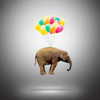 Elephant Lifted by Balloons - Achievement Concept - Free Stock Photo