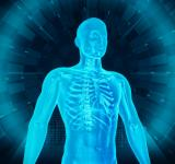 Free Photo - Medical Human Body Scan - Man and Technology