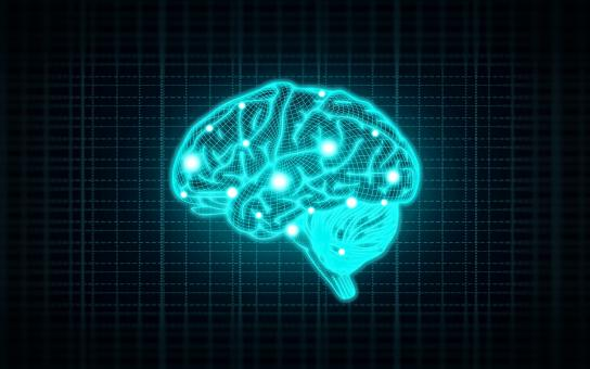 Concept of Intelligence with Human Brain on Blue Background - Free Stock Photo
