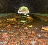 Free Photo - Catoctin Tube Tunnel - HDR