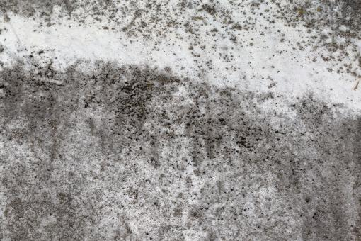 Grunge Stone Texture - HDR - Free Stock Photo