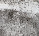 Free Photo - Grunge Stone Texture - HDR