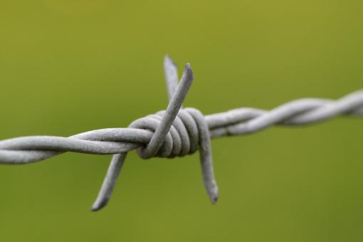 Wire - Free Stock Photo