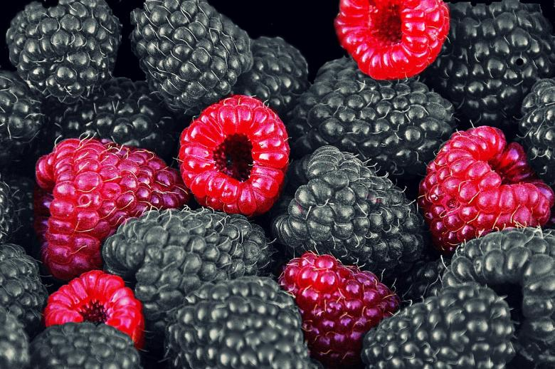 Free Stock Photo of Raspberries Created by Pixabay