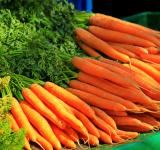 Free Photo - Bunch of Carrot