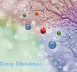 Free Photo - Merry Christmas