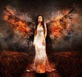 Free Photo - Angel of Fire