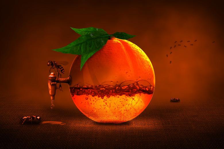Extracting Orange Juice - Free Fruit Stock Photos