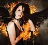 Free Photo - The Hunger Games