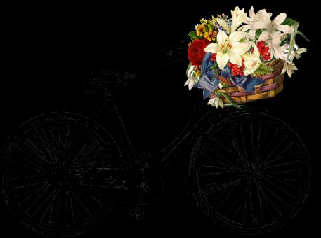 Bicycle With flowers - Free Stock Photo