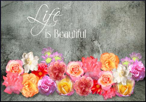 Life is Beautiful - Free Stock Photo