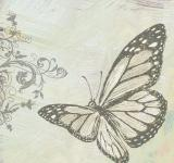 Free Photo - Sketch of a Butterfly